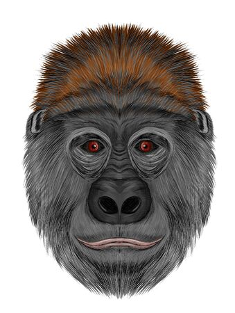 gorilla head funny shaggy gray with red eyes