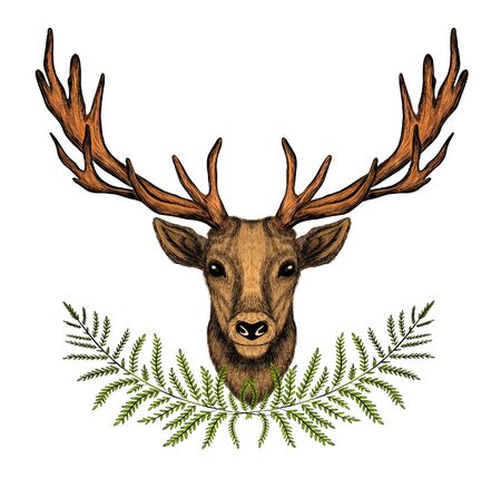 deer head with big horns brown and green fern