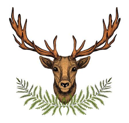 tête de cerf avec de grandes cornes de fougère brune et verte