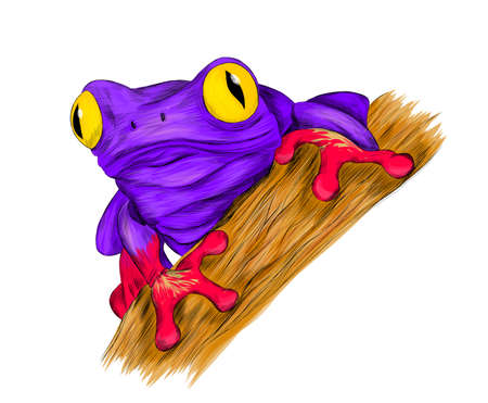 frog fairy fantastic cartoon funny vector illustration print purple pink yellow