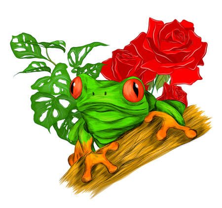 frog red eyed green tropical with palm leaves and roses flower vector illustration print cartoon funny