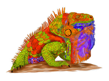 iguana reptile multicolored abstraction green orange blue details barcode graphic vector illustration
