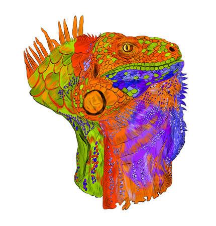 iguana head portrait reptile multicolored abstraction green orange blue details barcode graphic vector illustration