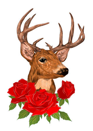 deer head with big horns brown and roses red flowers bouquet vector illustration print