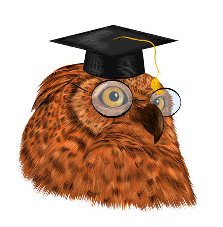 smart owl in black graduate hat and glasses University College school symbol realistic brown yellow eyes barcode vector illustration