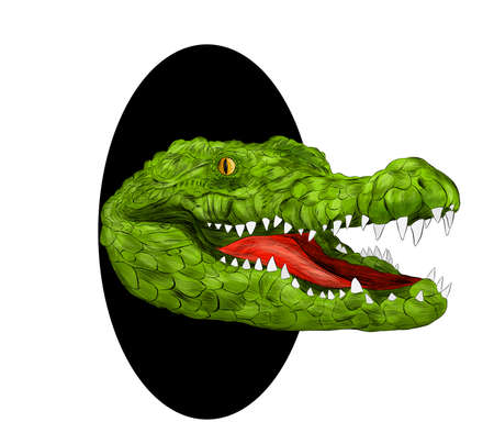 crocodile head portrait green with open mouth green cartoon peeking out of a black hole vector illustration