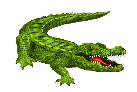 crocodile green with open mouth green cartoon vector illustration print