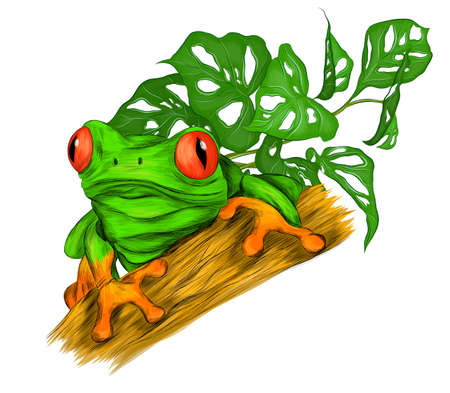 frog red eyed green tropical with palm leaves vector illustration print cartoon funny