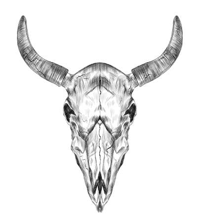 skull cow cattle horns mysticism black and white stroke graphics sketch vector Ilustracja