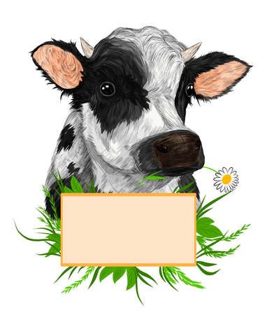cow and sign for advertising with flowers daisies and greens animal farm animal black and white vector illustration