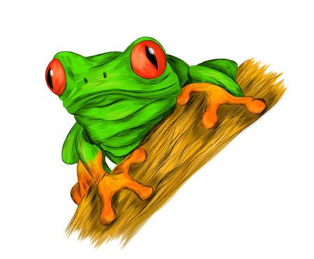 frog red eyed tree green cartoon funny vector illustration print