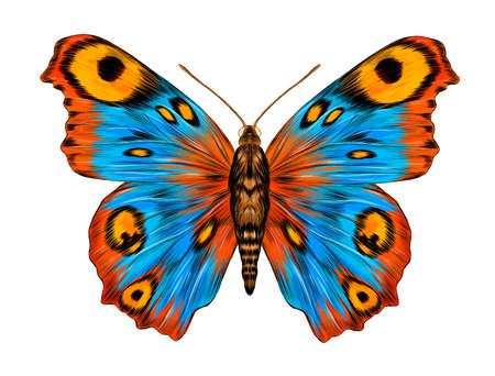 peacock eye fabulous barcode beautiful Urania Madagascar vector illustration blue yellow orange butterfly