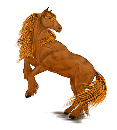 brown horse standing on its hind legs vector illustration