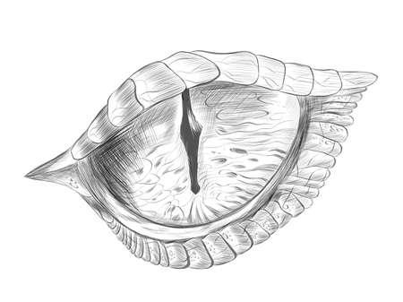 eye of a reptile crocodile evil cartoon science fiction sketch black vector illustration Ilustracja