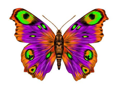 peacock eye fabulous barcode beautiful Urania Madagascar vector illustration purple green orange butterfly fairy