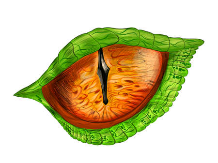 eye of a reptile crocodile evil cartoon science fiction vector illustration