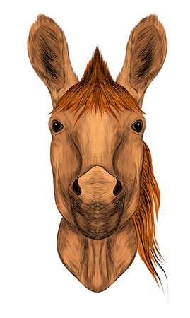 brown horse head face with light mane symmetrical vector illustration