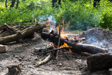 Bright fire bonfire in the spring forest. Stock Photo