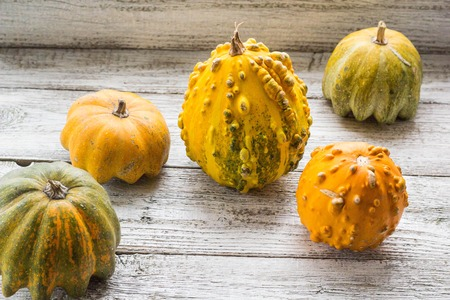 Different kind of pumpkins and winter squashes
