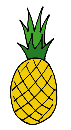 leaf logo: pineapple vector hand drawn icon isolated on background. Illustration