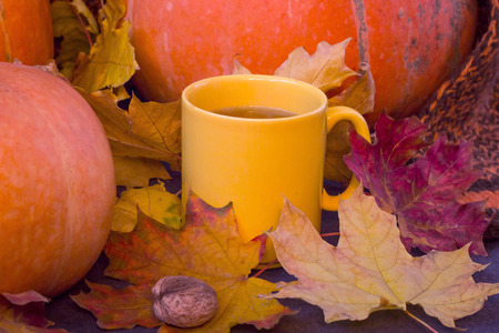 Cup of tea on the autumn fall leaves and pumpkin, halloween mood, toned.