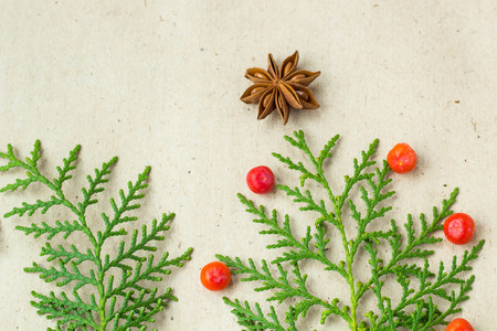 Christmas tree made of thuja branches and decorations star of anise and ashberry on rustic background. Christmas, new year concept. Flat lay, top view, copy space.