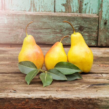 fresh pears with leaves on the dark rustic wooden table, toned Stockfoto