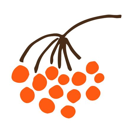 Simple hand drawn vector doodle illustration of rowan branch with red berries, seasonal autumn plant Stock Illustratie