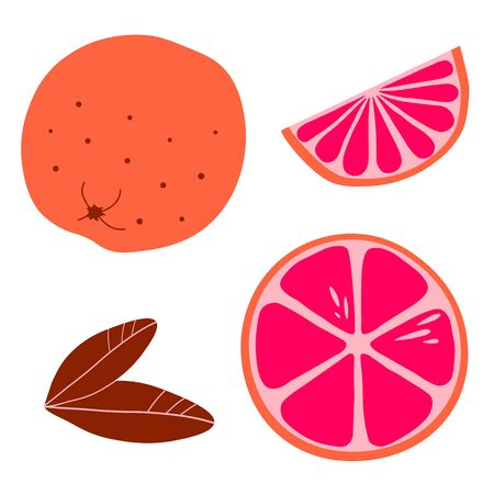 Set of whole and sliced grapefruit in flat style isolated on white background.