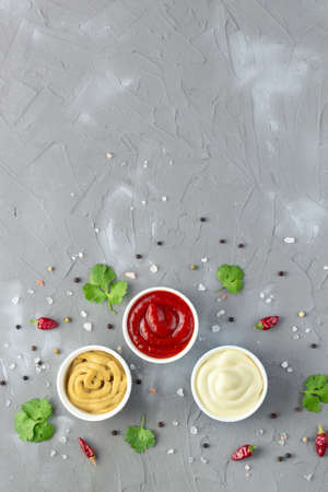 Set of various sauces with spices on gray stone background. Mayonnaise ketchup mustard. top view with copy space
