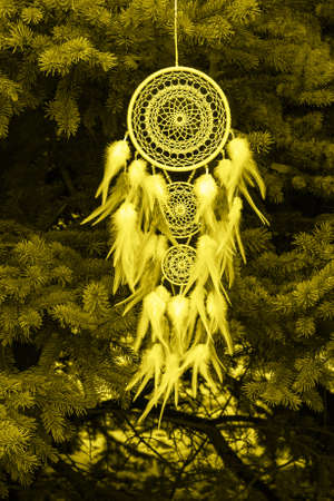 Dream catcher with feathers threads and beads rope hanging. Dreamcatcher handmade. Color of the year 2021