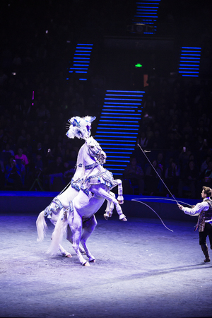 Horse performance in a circus