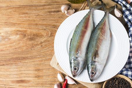 Indian mackerel Rastrelliger kanagurta Banque d'images