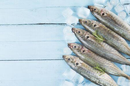 raw mackerel with ices