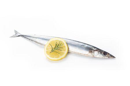 Saury fish on white background Stock fotó