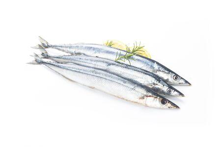 Saury fish on white background Reklamní fotografie