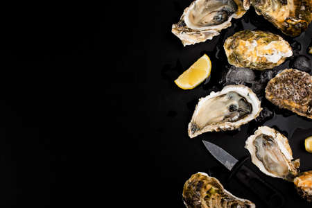 Opened oysters, ice and lemon on a black background. Banque d'images