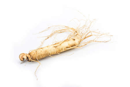 ginseng isolated on white background 写真素材 - 161935933
