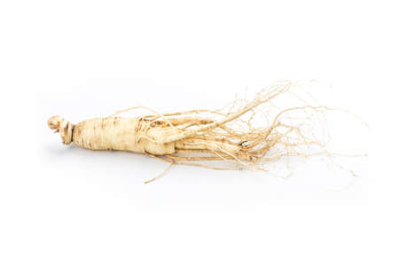 ginseng isolated on white background 写真素材 - 161936205