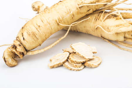 ginseng isolated on white background 写真素材