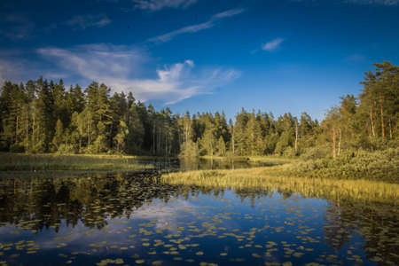 lakeview: swedish lakeview