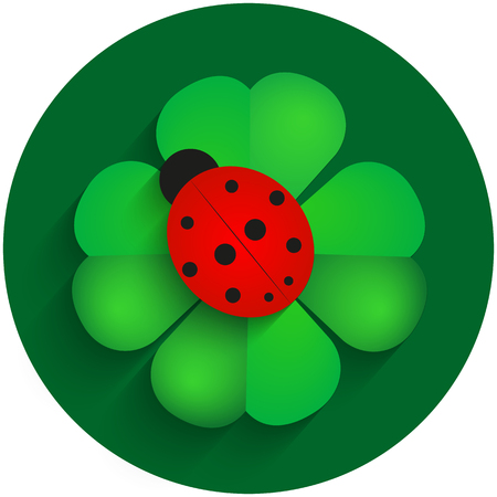 ladybird: Red ladybird on green clover with shadow