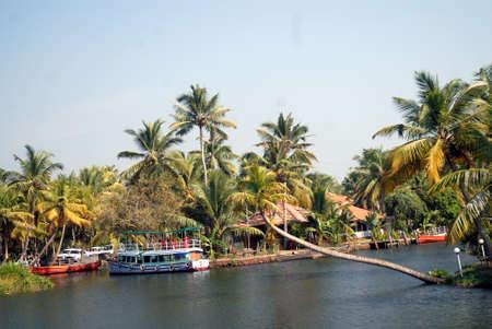 Backwater of  Kerala, India. Editorial