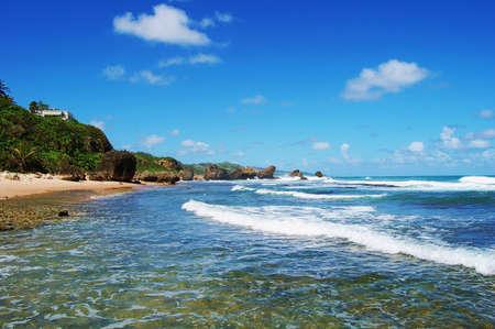 indies: Barbados,East Coast, Caribbean, West Indies