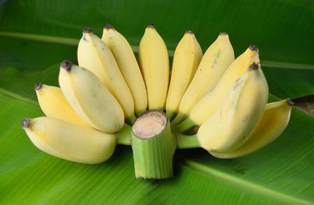 l agriculture: Local Thai Banana