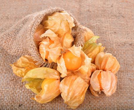 gooseberry: Fruta madura de la Uchuva