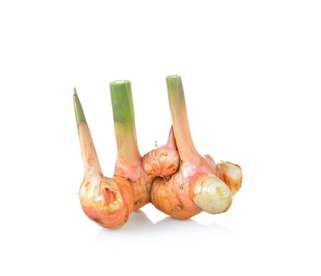 galangal: Fresh galangal isolated on white background.