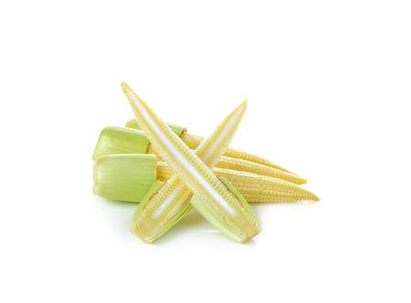 baby corn: Baby corn on  white background