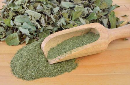 moringa: Dried Moringa leaf and powder - medicinal plant. Stock Photo