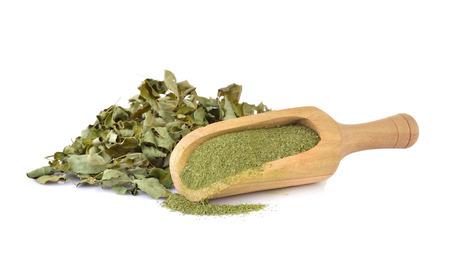 Dried Moringa leaf and powder - medicinal plant 版權商用圖片